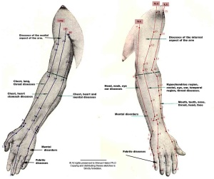 acupuncture meridians right arm